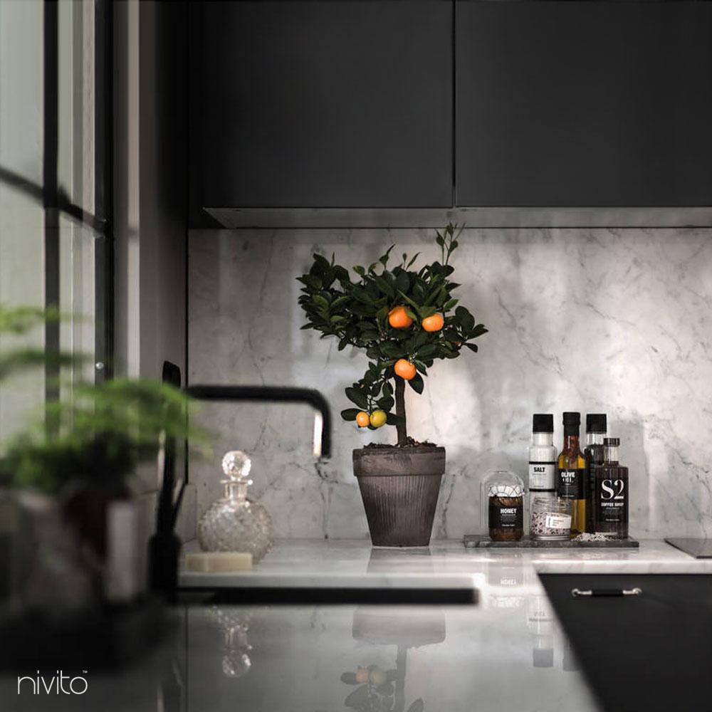 Negro cocina agua monomando